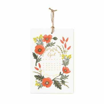 cal029-2017-herb-garden-05-apr_1