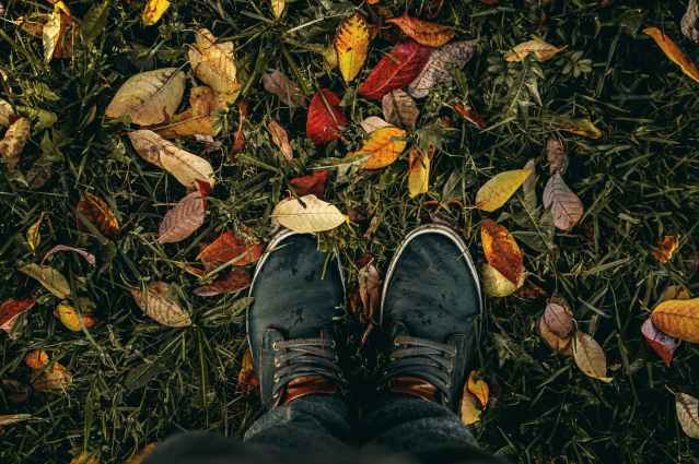 person wearing black lace up sneakers standing on green grass with fallen leaves